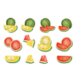Set of Delicious Fresh Red and Yellow Watermelons vector image vector image
