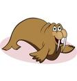 walrus cartoon vector image