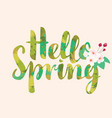 calligraphic inscription hello spring with flowers vector image