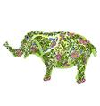 floral designer elephant vector image vector image