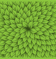 green leaves center background vector image vector image