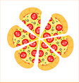 isolated pizza with white background vector image