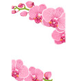 pink orchid flowers border frame template card vector image vector image