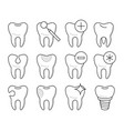 set of teeth in different conditions vector image