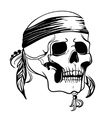 Skull with feathers vector image vector image