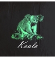 vintage of a green koala bear on the old bla vector image