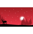 At night Christmas landscape with reindeer vector image vector image