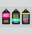 black sale label paper tag hanging set vector image