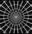 cobweb or spider web on dark background vector image vector image