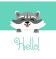 Cute raccoon says hello to you vector image