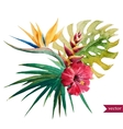 Nice tropical flowers vector image vector image