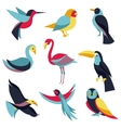 set logo design elements - birds signs vector image