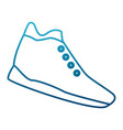 sport shoe isolated vector image vector image