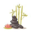 Stone flower and bamboo hygiene items for bath vector image