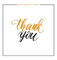Thank you text isolated on white background vector image vector image