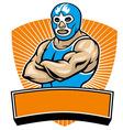 mexican wrestler vector image