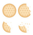 bitten chip biscuit cookie cracker set vector image