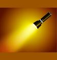 flashlight isolated on transparent background vector image