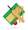 cricket field vector image