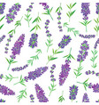 lavender-04 vector image vector image
