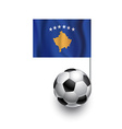 Soccer Balls or Footballs with flag of Kosovo vector image vector image