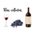 bottle of red wine with a glass and grape cluster vector image vector image