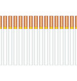 cigarettes pattern vector image