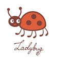 Cute colorful ladybug character vector image vector image