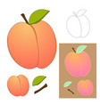 cute peach isolated on white background vector image vector image