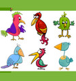 fantasy birds cartoon set vector image