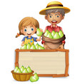 farmer with pear on wooden banner vector image vector image
