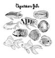 Graphic aquarium fish vector image vector image