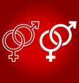 heterosexual line and glyph icon vector image