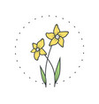 narcissus flower logo for spa and beauty salon vector image vector image