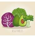 set vegetables healthy food vector image vector image