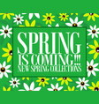 spring is coming new collection vector image