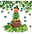 st patricks day cartoon vector image