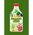 Vegetables juice Juice from fresh vegetables vector image vector image