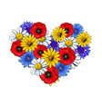 wild flowers - poppy chamomile cornflower daisy vector image vector image