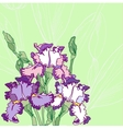 Background with blue pink irises vector image vector image
