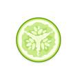 cucumber slice vector image vector image