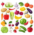 fruits and vegetables organic ingredients useful vector image vector image