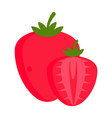 isolated strawberry fruit vector image