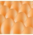 Organic Eggs vector image vector image
