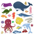 sea animals water plants ocean fish cartoon vector image