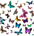 seamless colorful pattern design with butterflies vector image vector image