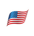 usa flag isolated vector image