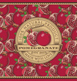 vintage pomegranate label on seamless pattern vector image