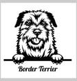 border terrier - peeking dogs - breed face head vector image vector image