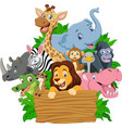 cartoon wild animal with blank signboard vector image vector image
